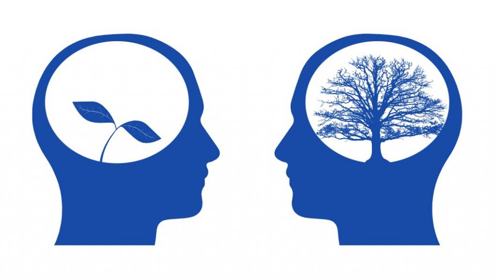 Illustrated heads with sapling and tree inside